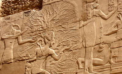 Egyptian Suckling Tree of Life